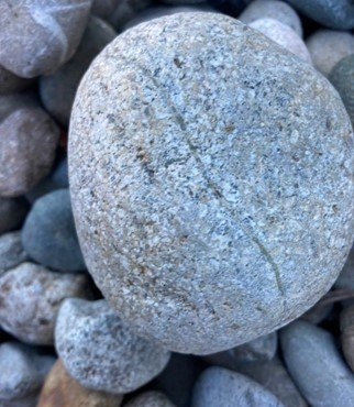 Rock photo submitted by Maci Cuthill